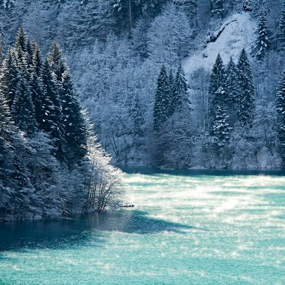 Il Lago di Sauris d'inverno